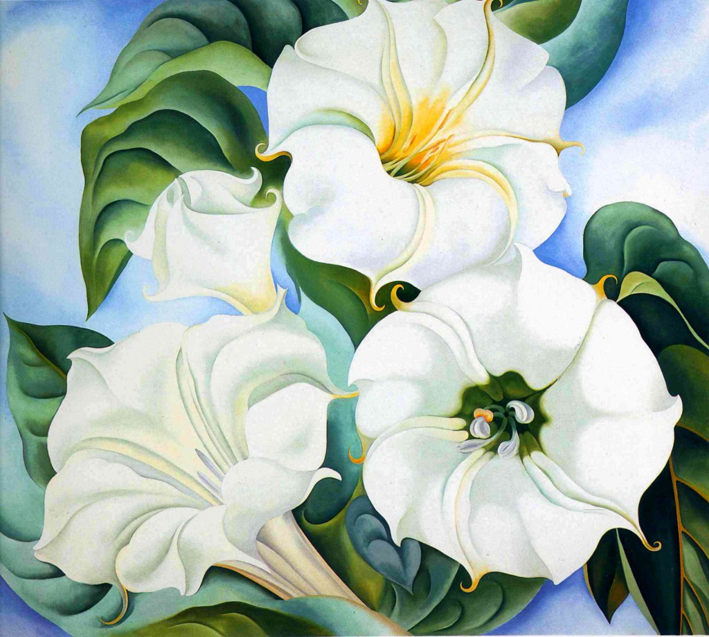 Georgia_OKeefe_WJ_white_flower_1936